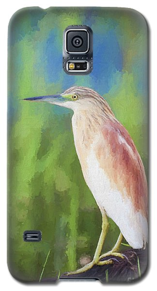 Squacco Heron Ardeola Ralloides Galaxy S5 Case by Liz Leyden