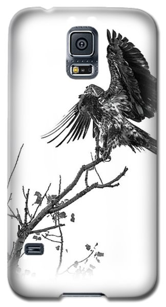 Squaw Creek Red-tail Galaxy S5 Case