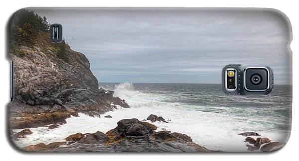 Squeaker Cove Galaxy S5 Case