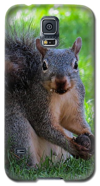Squirrel 2 Galaxy S5 Case