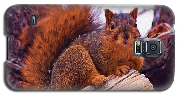 Squirrel In Tree Galaxy S5 Case