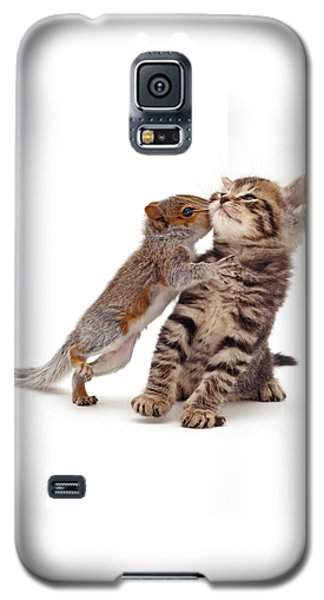Squirrel Kiss Galaxy S5 Case