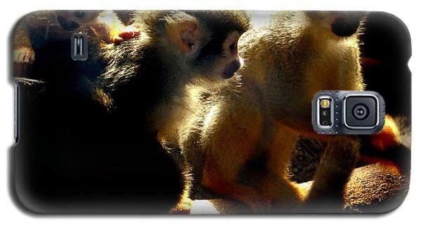 Squirrel Monkey Galaxy S5 Case