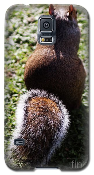 Squirrel S Back Galaxy S5 Case