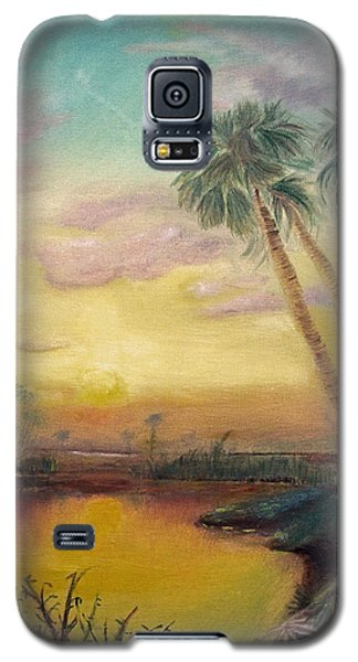 St. Johns Sunset Galaxy S5 Case by Dawn Harrell