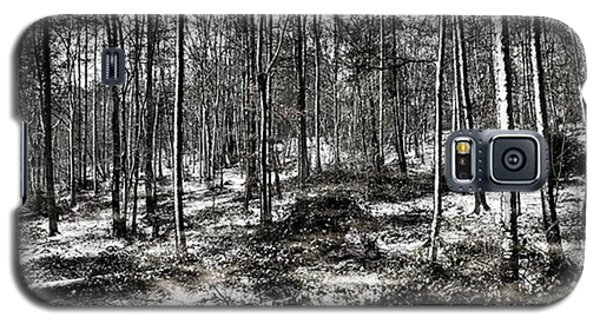 Galaxy S5 Case - St Lawrence's Wood, Hartshill Hayes by John Edwards
