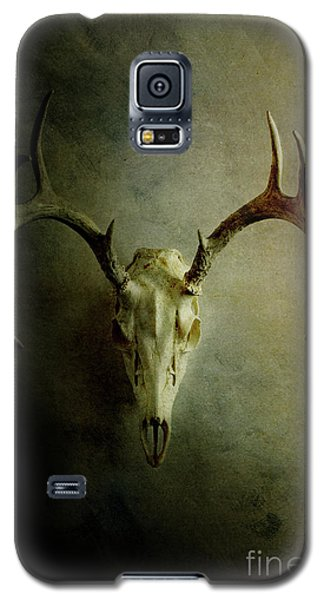 Galaxy S5 Case featuring the photograph Stag Skull by Stephanie Frey