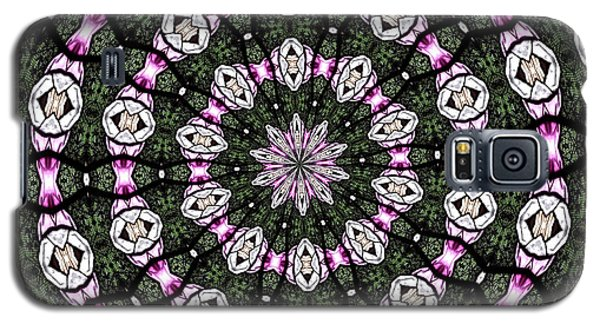 Galaxy S5 Case featuring the photograph Stained Glass Kaleidoscope 3 by Rose Santuci-Sofranko