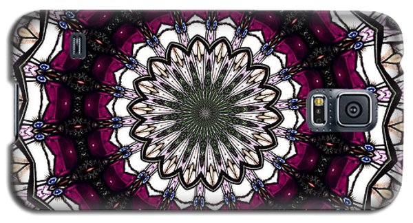 Galaxy S5 Case featuring the photograph Stained Glass Kaleidoscope 4 by Rose Santuci-Sofranko