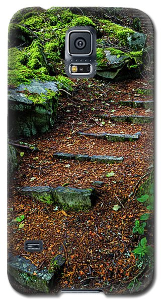 Stairway To..... Galaxy S5 Case