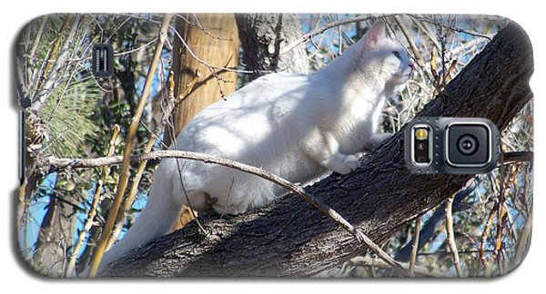 Stalking Ghost Galaxy S5 Case