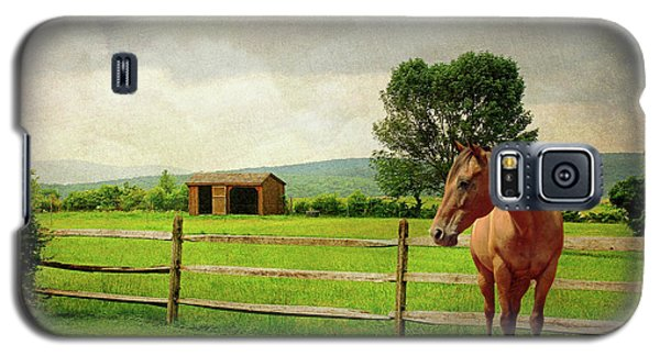 Galaxy S5 Case featuring the photograph Stallion At Fence by Diana Angstadt