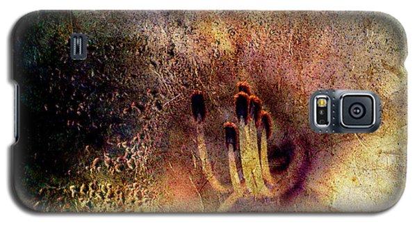 Stamins Of A Daylily Galaxy S5 Case
