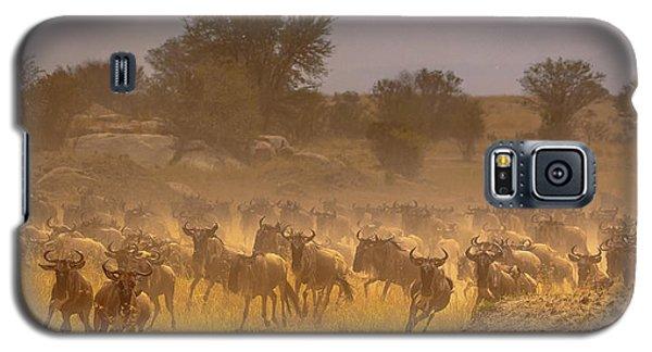 Stampede-serengeti Plain Galaxy S5 Case