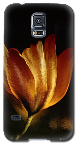 Stand Alone Galaxy S5 Case by Elaine Manley