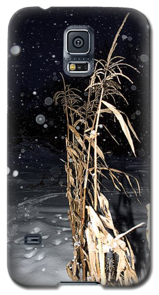 Galaxy S5 Case featuring the photograph Stand Tall by Annette Berglund