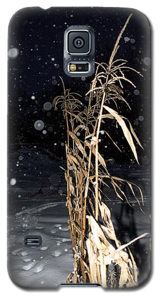 Stand Tall Galaxy S5 Case by Annette Berglund