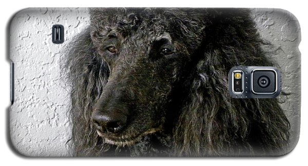 Standard Poodle Galaxy S5 Case