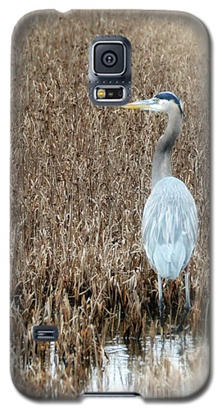 Galaxy S5 Case featuring the photograph Standing Alone by Tamera James