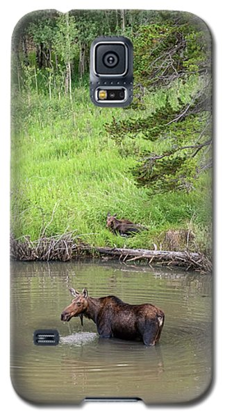 Galaxy S5 Case featuring the photograph Standing Guard by James BO Insogna
