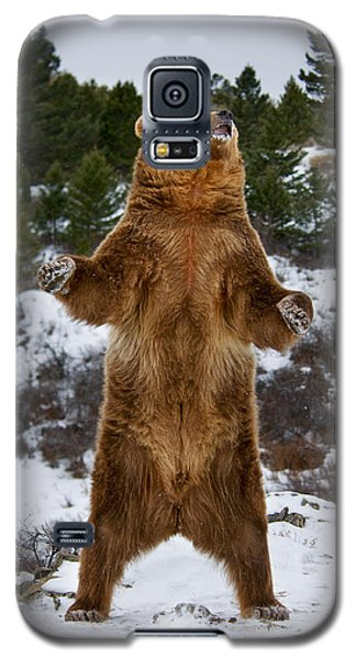 Standing Grizzly Bear Galaxy S5 Case