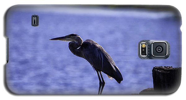 Standing On The Dock Of The Bay Galaxy S5 Case