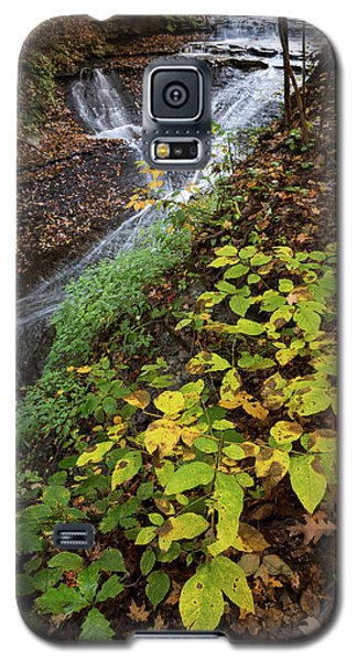 Galaxy S5 Case featuring the photograph Standing On The Edge by Dale Kincaid