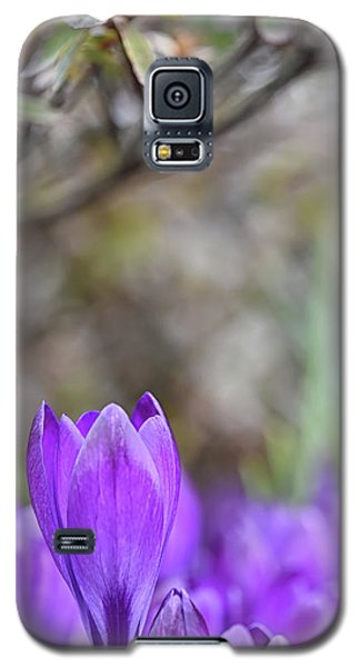 Standing Out From The Crowd Galaxy S5 Case
