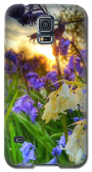 Standing Out Galaxy S5 Case by Isabella F Abbie Shores FRSA