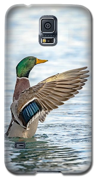 Standing Ovation Galaxy S5 Case