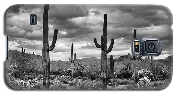 Standing Saquaros Galaxy S5 Case