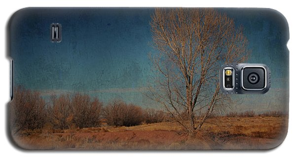 Galaxy S5 Case featuring the photograph Standing Solo by Barbara Manis