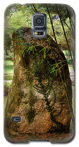 Standing Stone With Fern And Bamboo 19a Galaxy S5 Case