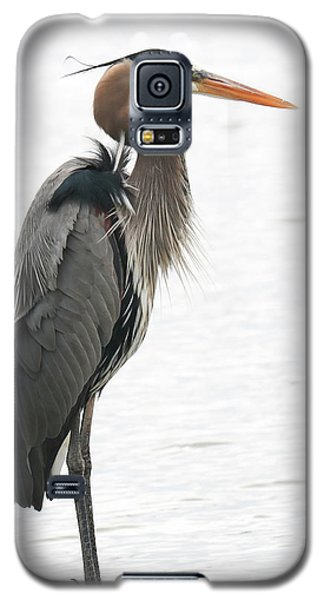 Standing Tall Galaxy S5 Case by Anita Oakley