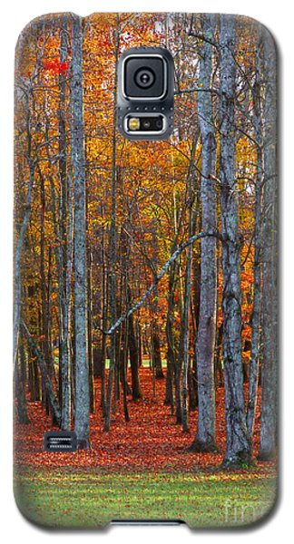 Standing Tall On The Natchez Trace Galaxy S5 Case