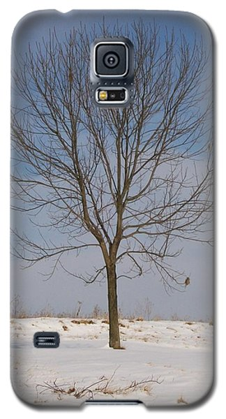 Galaxy S5 Case featuring the photograph Standing Tall by Sara  Raber