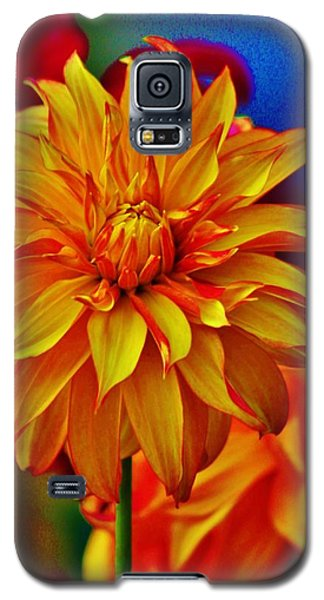 Star Burst Galaxy S5 Case