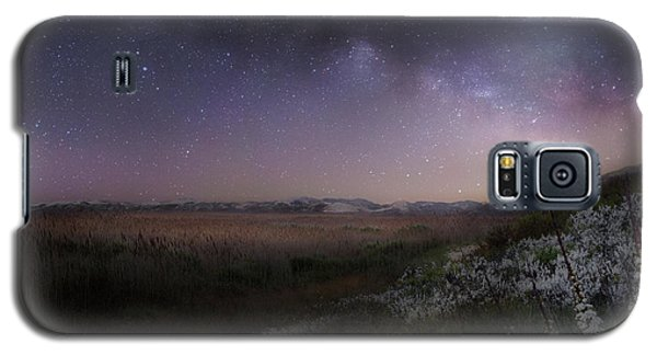 Galaxy S5 Case featuring the photograph Star Flowers Square by Bill Wakeley