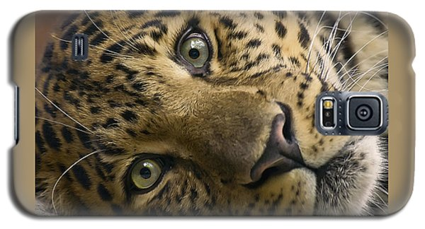 Galaxy S5 Case featuring the photograph Stare Down by Cheri McEachin