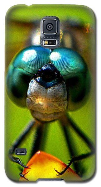 Galaxy S5 Case featuring the photograph Stare Down With A Dragonfly 001 by George Bostian