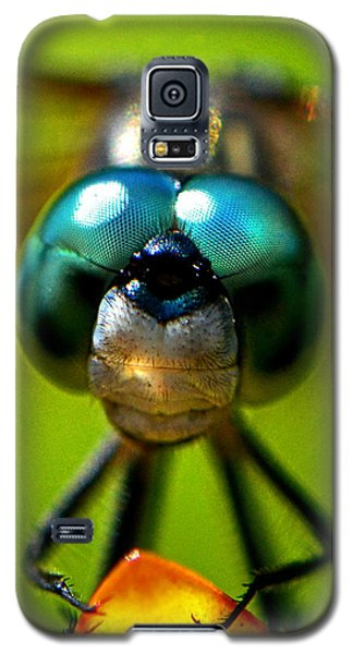 Stare Down With A Dragonfly 001 Galaxy S5 Case