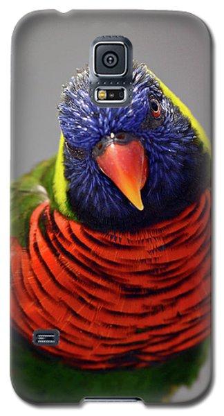 Stare You Down Galaxy S5 Case