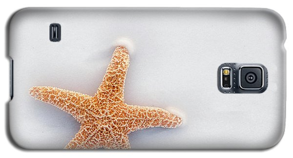 Starfish Galaxy S5 Case