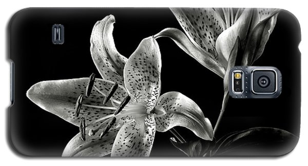 Stargazer Lily In Black And White Galaxy S5 Case