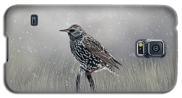 Starling In Winter Galaxy S5 Case