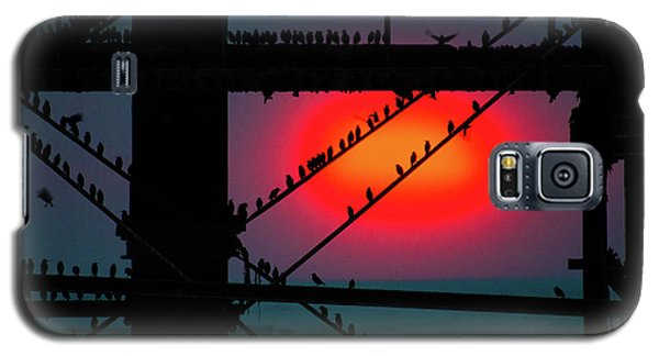 Starlings Against The Setting Sun Galaxy S5 Case