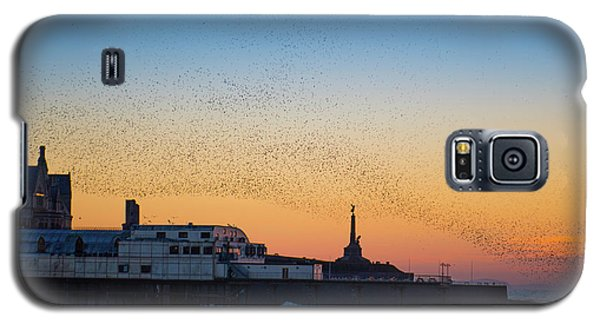 Starlings At Sunset In Aberystwyth Galaxy S5 Case