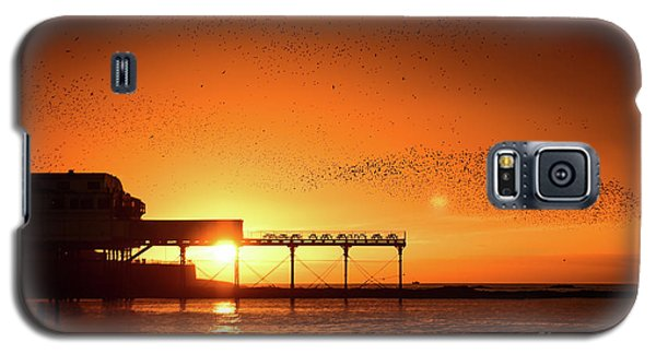 Starlings At Sunset Over Aberystwyth Pier Galaxy S5 Case