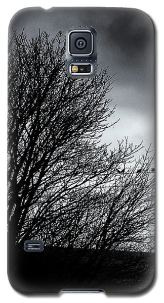 Starlings Roost Galaxy S5 Case