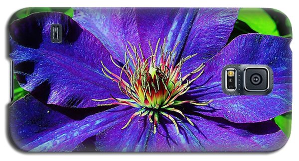 Galaxy S5 Case featuring the photograph Starry Bloom by Susan Carella
